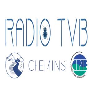 Radio TVB